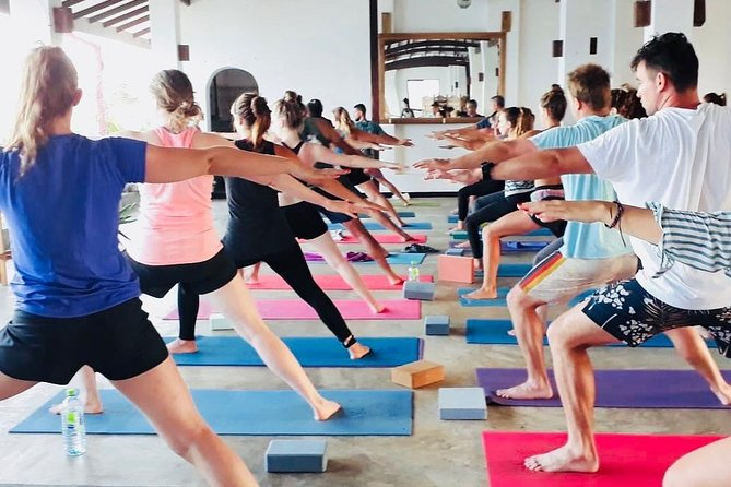 1World Yoga Vinyasa Classes