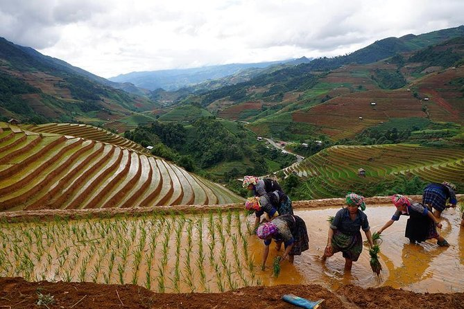 The best of North West Vietnam in 6 days 5 nights