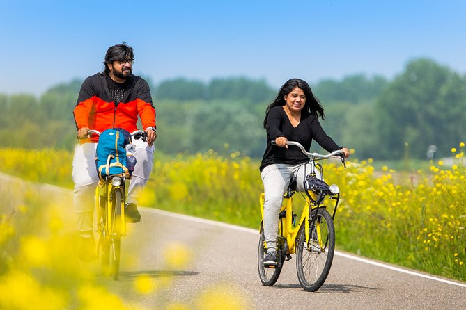 Excursão de Bicicleta na Zona Rural e Vilas Holandesas saindo de Amsterdã