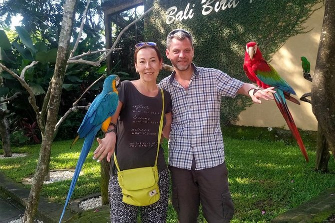 Ubud tour and bird park (includes lunch, transfer, tickets)