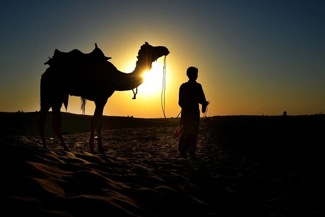 Camel Ride & Barbeque Dinner at the Pyramids