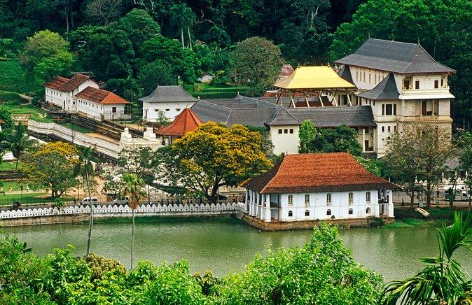 Kandy Day Tour From Bentota & It's Surrounding