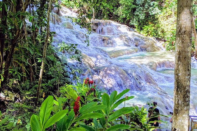 Excursão particular em Ocho Rios