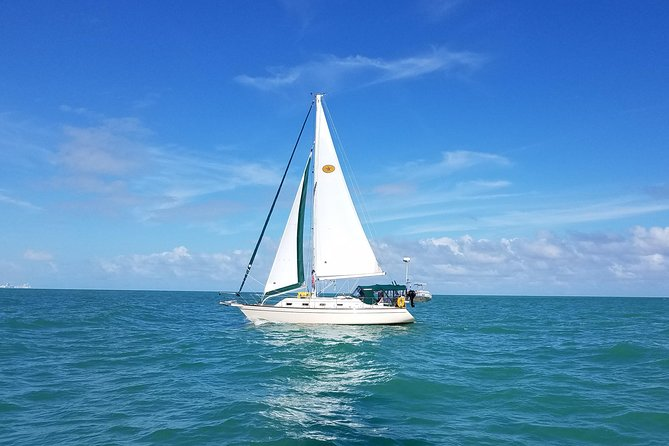 Three-Hour Private Day Sailboat Tour On Biscayne Bay For Up To Six