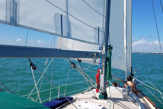 Three-Hour Private Day Sailboat Tour On Biscayne Bay For Up To Six photo 7