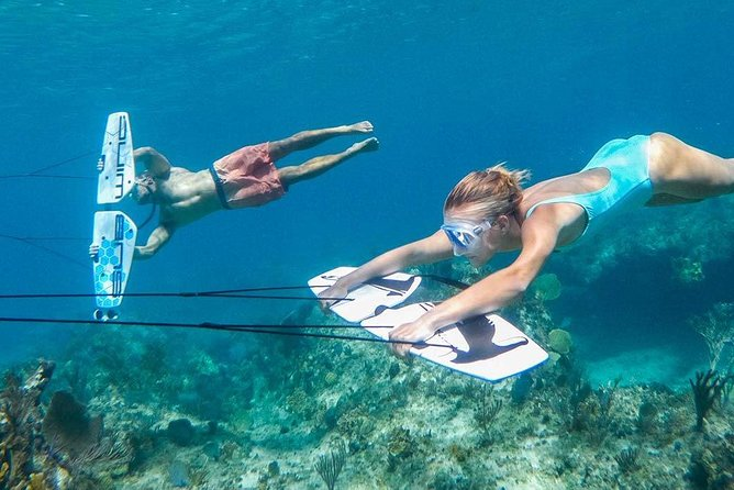 Dolphin House Private Snorkeling Trip by Speed boat With Sub Wing - Hurghada