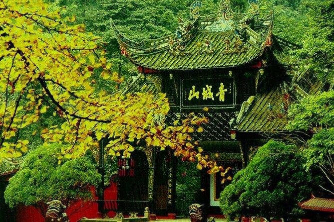 Private tour:Mt.Qingcheng & Dujiangyan & Voluntee Work at Panda Base