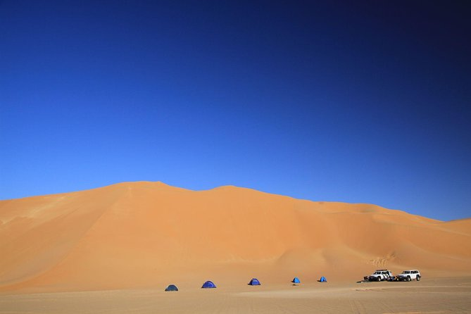 Evening Desert Safari with Belly Dance and BBQ Dinner and Camel Ride