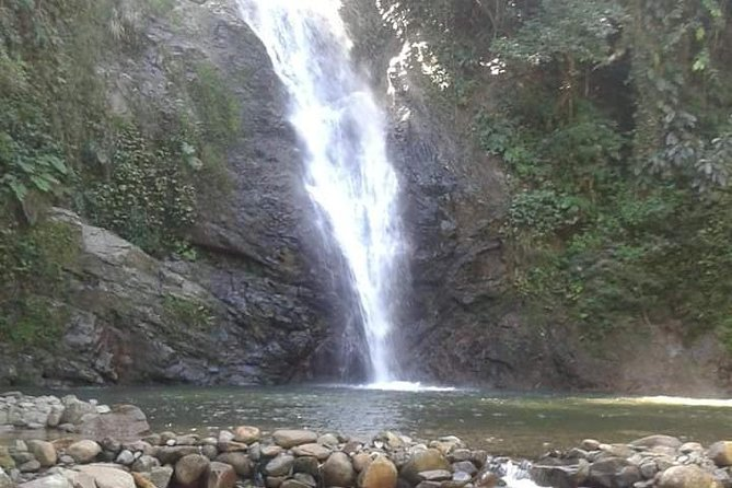 Coastal Adventure - Biausevu Waterfall & Village Tour