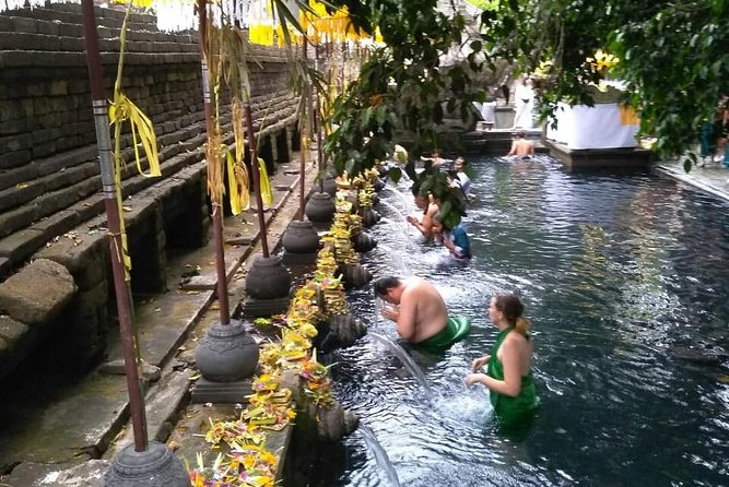 Full Day Private Ubud Tour With Waterfall