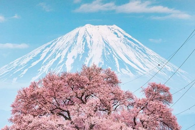 Mt Fuji Day Tour with English Speaking Guide