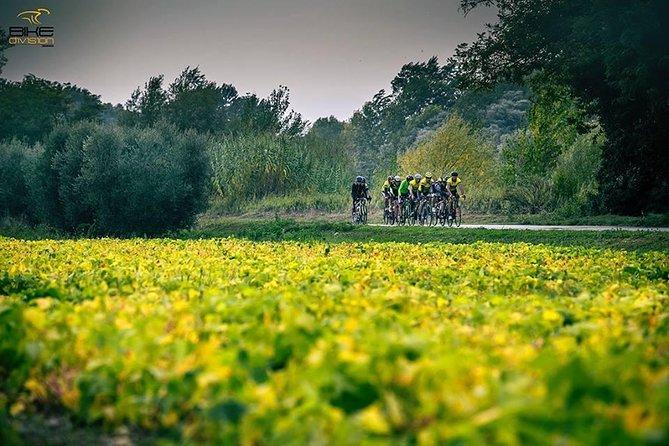 Marche Bike & Wine Tour