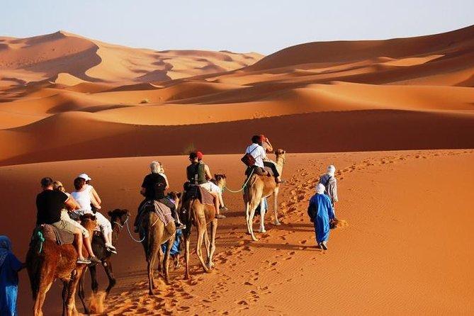 casablanca to marrakech 8 days desert tour