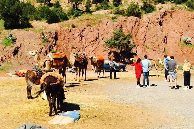 Ourika Valley : 1 day tour from Marrakech to Atlas Mountain Ourika Valley