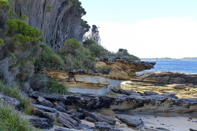 Day Trip To Cronulla & The Royal National Park