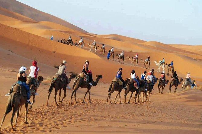 Marrakech and the Atlantic Coast