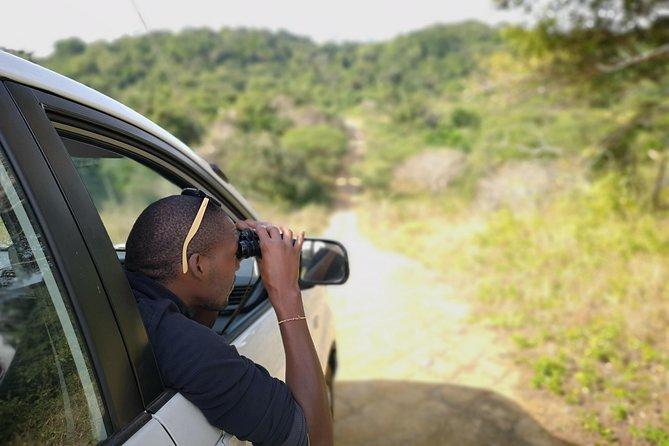 Chintsa to Addo Photo Safari