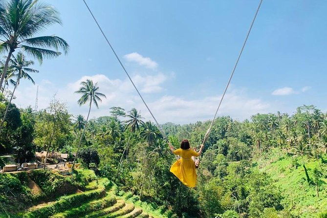 Ubud Private Tour: Swing, Monkey Forest, Waterfall, Temple All-inclusive