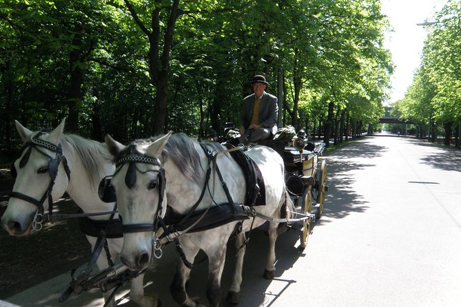 Prater-Transfer--Carriage Ride by Fiaker Wien photo 2