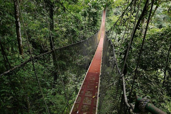 Rainmaker Nature Park