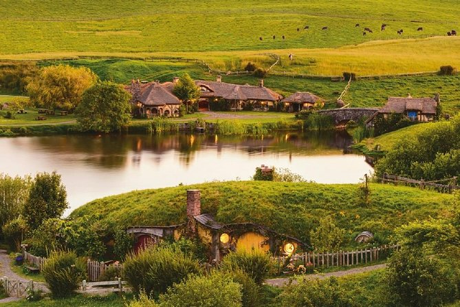 Guided Full Day Small Group Tour Including Hobbiton, Rotorua & Te Puia