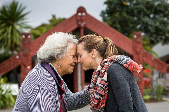 Hobbiton, Rotorua and Te Puia: Small Group -Auckland Return or Rotorua Drop Off