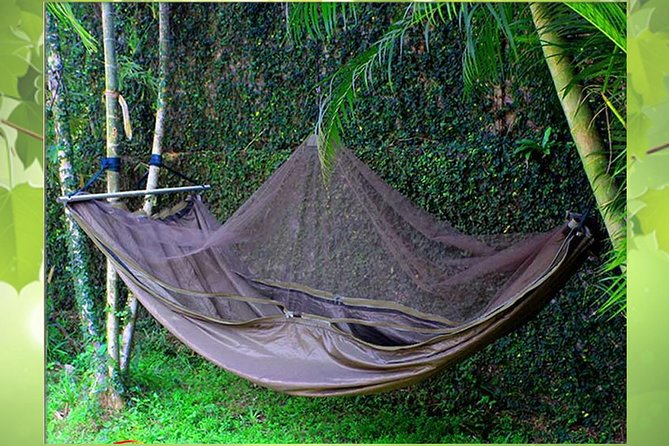 Scan Alpine Hammock for Rent