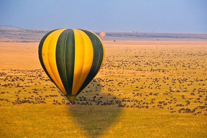 Kenya Under Canopy