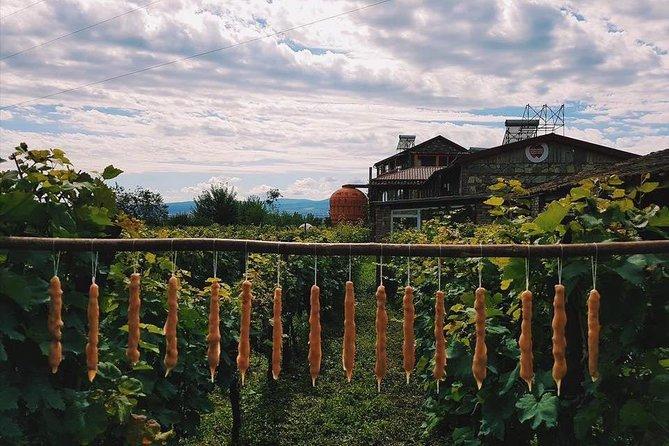 Going to Rtveli - The main holiday of autumn in Georgia!