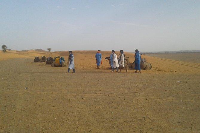 2 Days Zagora Desert Trip From Marrakech