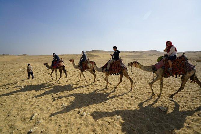 camel or horse sun rise &sunset pyramids&sphinx tour
