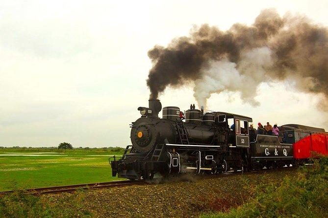 4 Days Train Of Wonder Across The Highlands