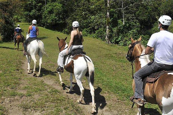 Horseback riding, Visit a Costa Rican family on a farm.
