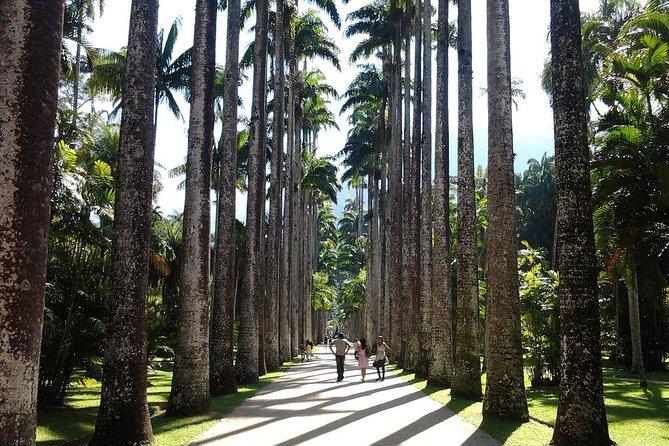 Tour 6 ( 4 hours ) : Sugar Loaf and Botanical Garden