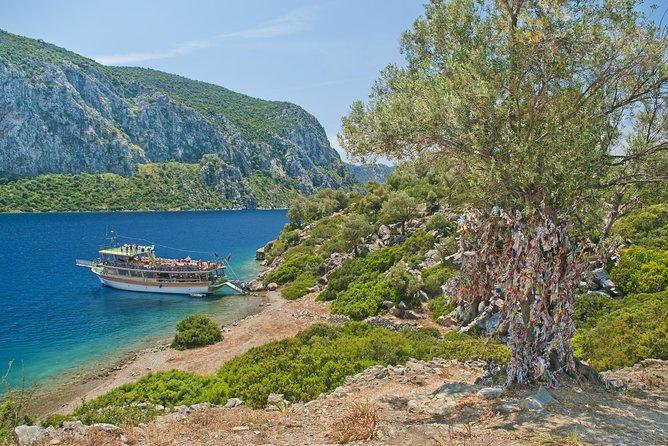 Camellia Island Boat Trip