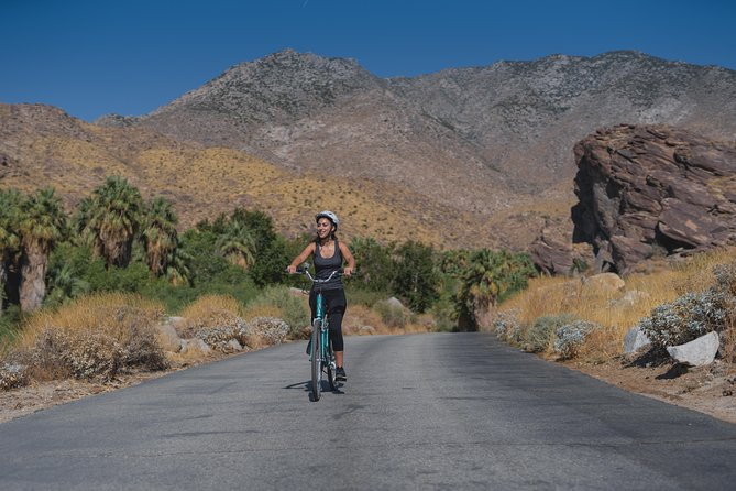 Indian Canyons Bike and Hike Tour from Palm Springs