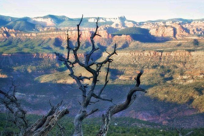 Mesa Vista overlook