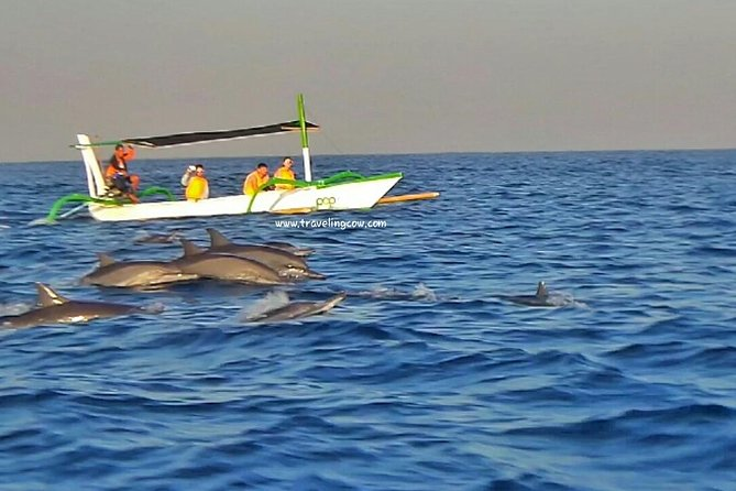 The Best Multi Private Tours 2 Day 1 Night Stay At Lovina Beach Watching Dolphin