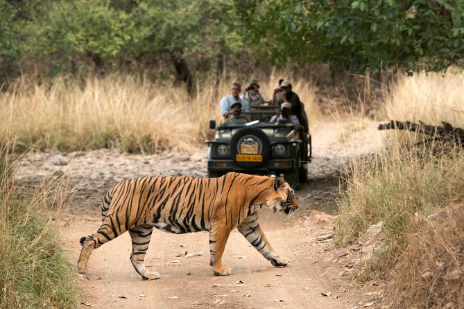 5 Days Golden Triangle Tour with Ranthambore Delhi Agra Jaipur