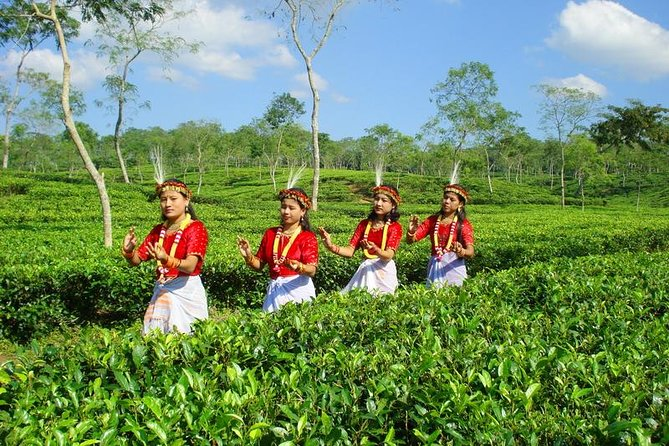 Private Tour: 5 Days - Bangladesh Nature & Culture Tour - North-eastern part