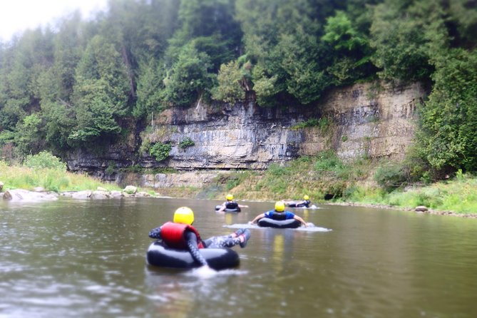 White Water Tubing At Elora Gorge