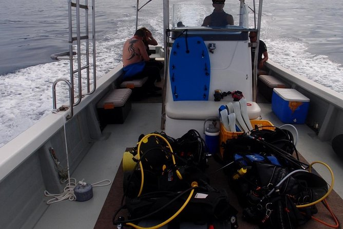 Trial Boat Diving for Non-Certified Diver (2 Dives) at around the area of Minna Island, Sesoko Is. in the morning! photo 7