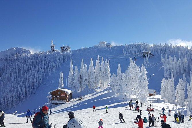 Poiana Brasov Ski/Snowboard Lessons
