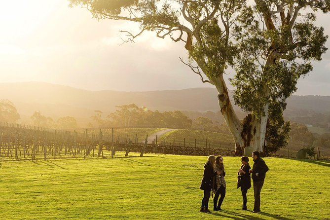 Full-Day Hahndorf and Adelaide Hills Hop-On Hop-Off Tour from Adelaide