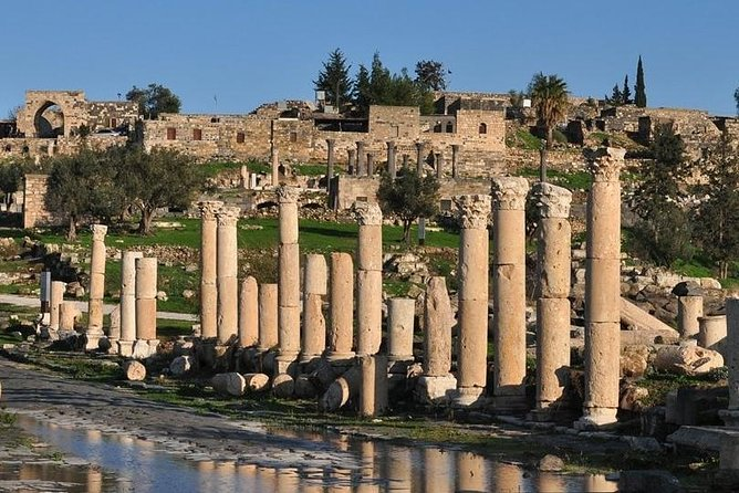 Full Day Amman to Umm Qais with Jerash Ajloun Tour With Lunch & Driver Guide Inc