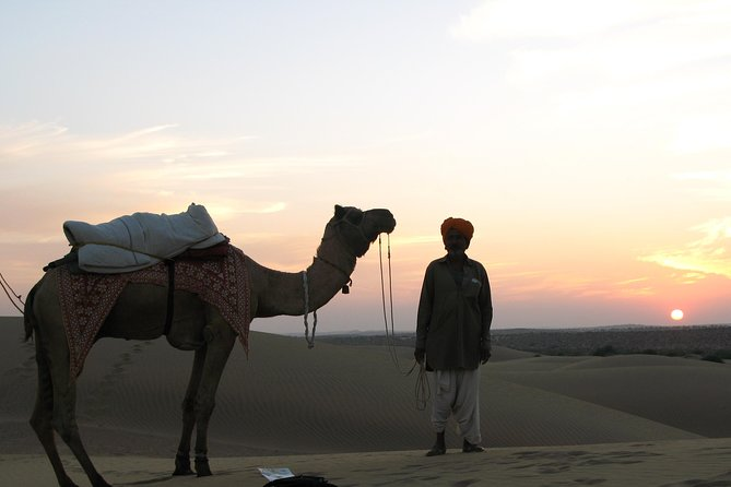 Half Day Sunset Camel & Cultural Adventure photo 4