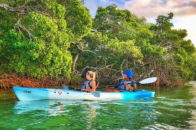 Small Group Kayak Tour of the Shell Key Preserve