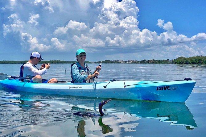 Small Group Kayak Tour of the Shell Key Preserve