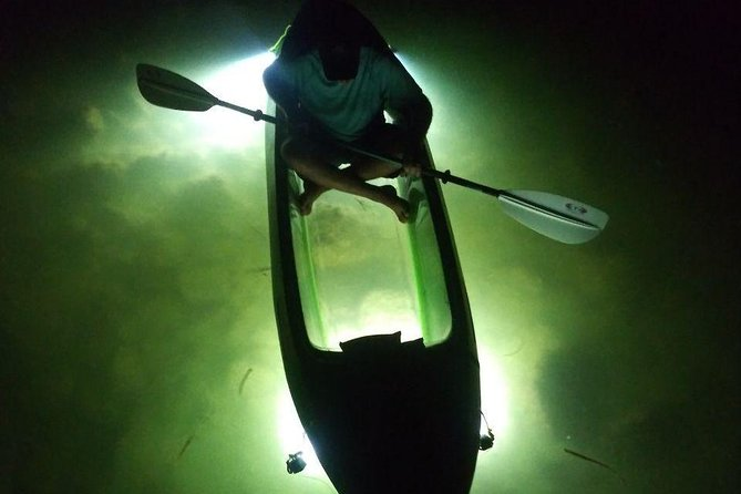 LED illuminated Night Tours on Glass Bottom Kayak