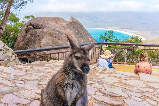 Wineglass Bay & Freycinet NP Full Day Tour from Hobart via Richmond Village
